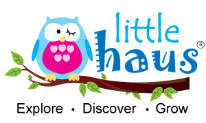 Little Haus Preschool & Childcare Centre